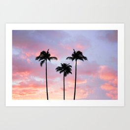 Palm Trees Sunset Photography Art Print