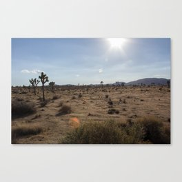 Well it's a hot one... Canvas Print