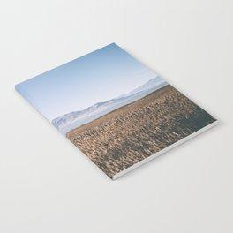 Utah Lake Notebook