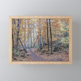 Looking for The Right Path (Fageda d'en Jordà, Catalonia) Framed Mini Art Print