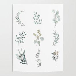 Botanical elements Poster