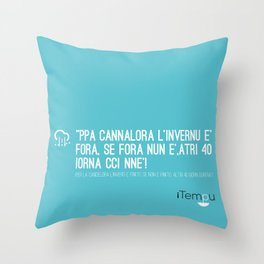 iTempu Throw Pillow