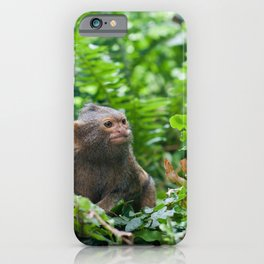Pair of pygmy monkeys sitting in green grass. Shallow depth of field iPhone Case