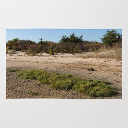 isle of beach grass Rug