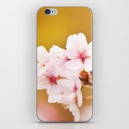 Blooming fairy cherry tree flowers iPhone Skin