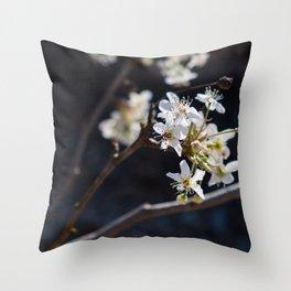 Wabi Sabi - color and light Throw Pillow