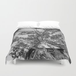 The old eucalyptus tree Duvet Cover