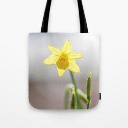 Daffodil V Tote Bag