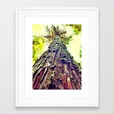 BC Framed Art Print