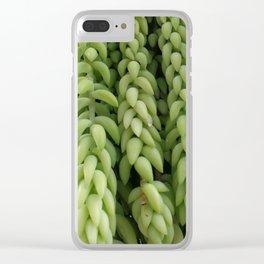 Sedum morganianum Clear iPhone Case