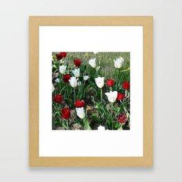 JC Floral Art 06 Framed Art Print