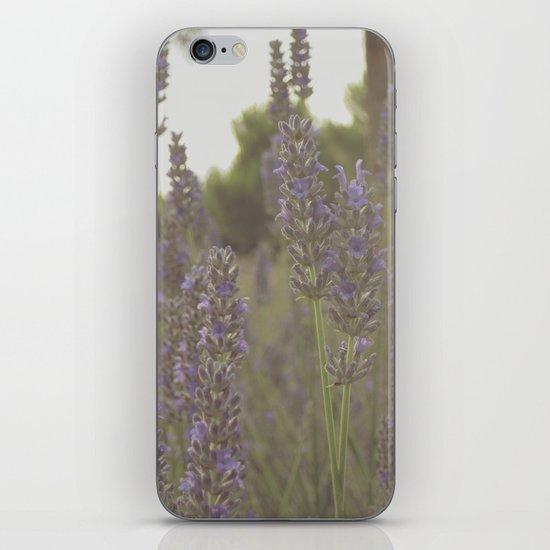 Beez iPhone & iPod Skin