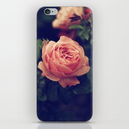 Vintage Rose iPhone Skin