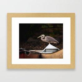 Great Blue Heron III Framed Art Print