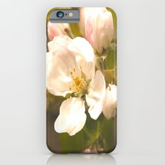 Apple Blossoms Slim Case iPhone 6s