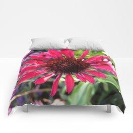 Hot Pink Beauty Comforters