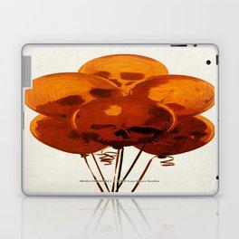 SKULLOONS B21 Laptop & iPad Skin
