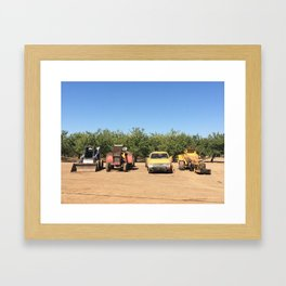 california orchard Framed Art Print
