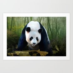 The Giant Panda Art Print
