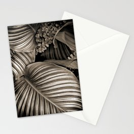 Striped Tropical Calathea Leaves Stationery Cards