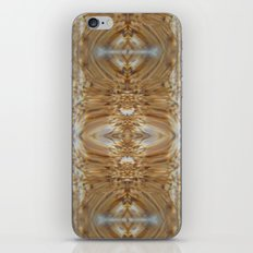 Five Spices iPhone & iPod Skin