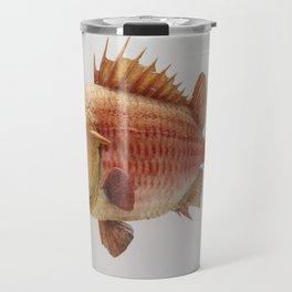 Puzzled Fish Travel Mug