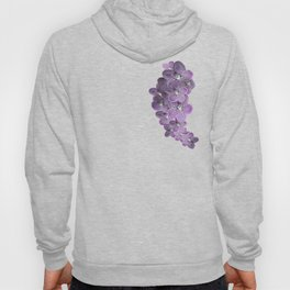 Violet Purple Orchids Hoody
