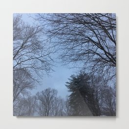The Trees - Snowy & Blue Metal Print