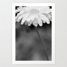 tall black and white flower  Art Print