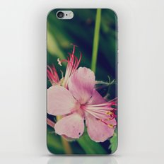 Star Flower iPhone & iPod Skin