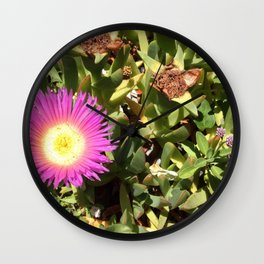 Ice plant Wall Clock