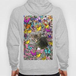 Emma in Butterflies - Gray Tabby Kitty Hoody