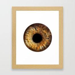 EYE Love to See You, Green II Framed Art Print