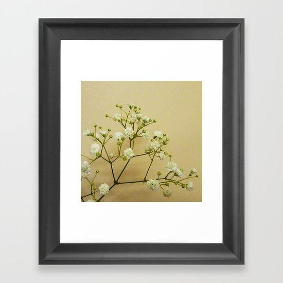 Gypsophelia Framed Art Print