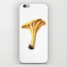 Chanterelle iPhone & iPod Skin