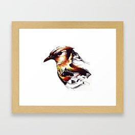 'JACKDAW' Framed Art Print