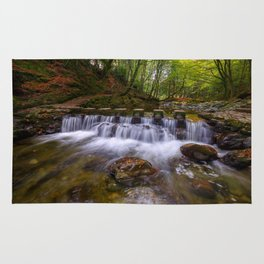 Tollymore Forest Park Northern Ireland Rug