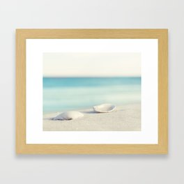 Seashell Beach Photography Art, Shell Coastal Ocean Photo, Seashore Sea Aqua Blue Print Framed Art Print