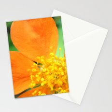 Orange Flower Photography Stationery Cards