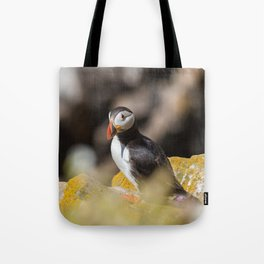 Puffin from Ireland (RR 284) Tote Bag
