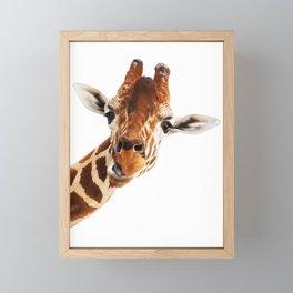 Giraffe Portrait // Wild Animal Cute Zoo Safari Madagascar Wildlife Nursery Decor Ideas Framed Mini Art Print