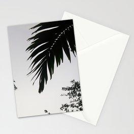 Florida Palms Stationery Cards