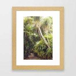Florida Dreaming Framed Art Print
