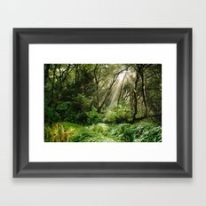 In the Forest Framed Art Print