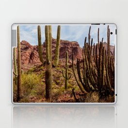 Cacti Variety Laptop & iPad Skin