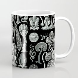 Ernst Haeckel - Mycetozoa (black) Coffee Mug