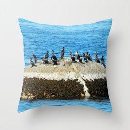 Cormorants Basking on a Boulder Throw Pillow