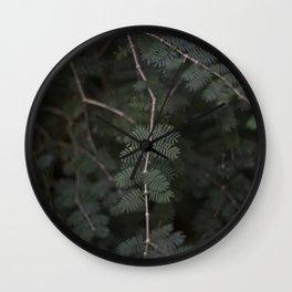 Plant - Fern 3 Wall Clock