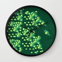 * Lily Pads * Wall Clock