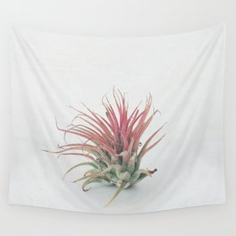 Air Plant Wall Tapestry